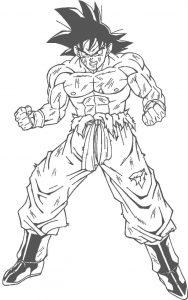 Goku Sin Color