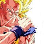 Goku Lastimado